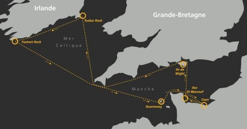 carto normandie cup